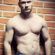 Stockfoto: body-builder