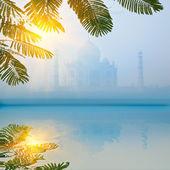 Taj Mahal in morning fog with reflection — Stock Photo