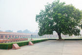 Charbagh or Mughal Garden in morning mist — Stock Photo