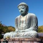 Great Buddha statue in Kamakura — Stock Photo #40624941