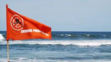 Rudá vlajka na mořské pláži — Stock video