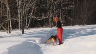 Beauty woman with dog in winter country — Stock Video
