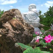 Buddha and lotus on blue sky background — Stock Video