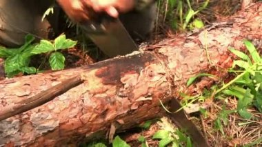 Cutting timber with a hand saw — Stock Video