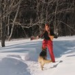 Stock Video: Womwith dog in winter forest