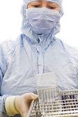 Pesquisador de biotecnologia — Foto Stock