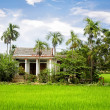 House in Green rice field, Vietnam — Stock Photo