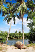 Old fisherman boat on the tropical palm beach — Stock Photo