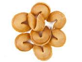 幸运饼干与孤立的空白滑动 — 图库照片