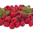 Ripe raspberry isolated — Stock Photo