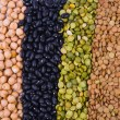 Foto Stock: Legume collection