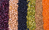 Legume collection — Stockfoto