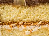Cake background — Stock Photo