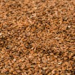 Brown flax seed — Foto de Stock