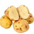 Potatoes isolated — Stock Photo #19536487