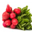 Radish bunch isolated — Lizenzfreies Foto
