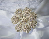 Jeweled broach — Stock Photo