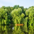 Summer river landscape — Stock Photo #26814259