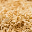 Background of wood shavings — Stock Photo