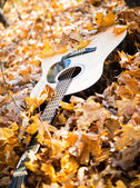 Guitar in autumn leaves — Stock Photo