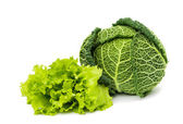 Savoy cabbage and lettuce — Stock Photo