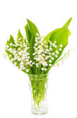 Lily of the valley isolated — Stock fotografie