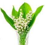 Постер, плакат: Bouquet of lilies of the valley