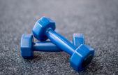 činky na koberci v tělocvičně — Stock fotografie