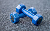 Dumbbells on the carpet in the gym — Stockfoto
