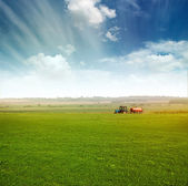 Tractor in field gather crops — ストック写真