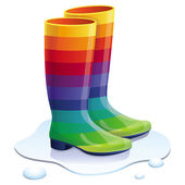 Vector rubbers boots in rainbow colors — Stock Vector