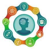 Vector education concept - brain and creativity — Stock Vector