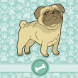 Royalty-Free Stock  : Vector funny cartoon pug