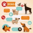 Vector set of infographics design elements - dogs — Stock Vector