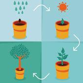 Vector growth concept — Stock Vector