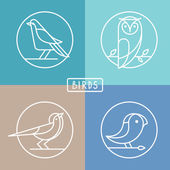 Vector bird icons in outline style — Stok Vektör