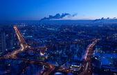 Bir kuş ile büyük şehir — Stok fotoğraf