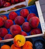 Owoce tropikalne — Zdjęcie stockowe
