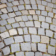 Paved sidewalk in the Vienna — Stockfoto