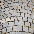 Paved sidewalk in the Vienna — Stock fotografie