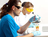 Two doctors in the lab — Stock Photo