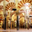 The Great Mosque — Stock Photo #22830922