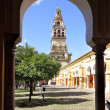 Cordoba — Stock Photo #22830932
