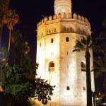 Torre del Oro — Stock Photo #23483457