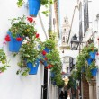 Cordoba — Stock Photo #23483615