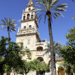 Cordoba — Stock Photo