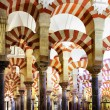 The Great Mosque of Cordoba — Stock Photo #24039185