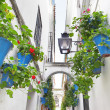 Calleja de las Flores — Stock Photo