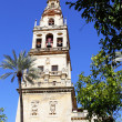 Bell tower of Cathedral — Stock Photo