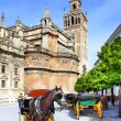 Seville — Stock Photo #24039243
